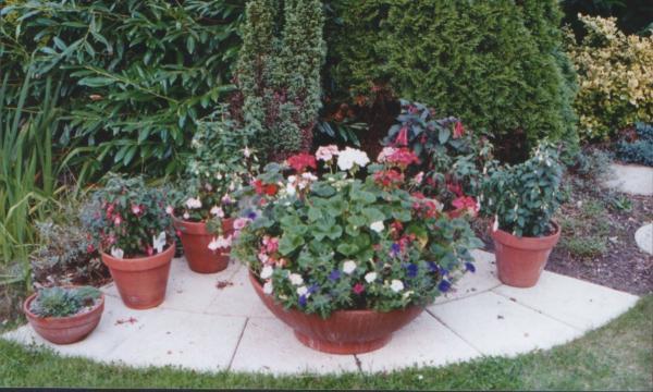 Flower Corner 2002