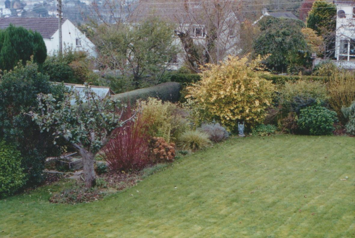 Mums back garden in Tavistock