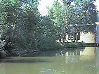 The Qton lake and a bit of the Qton centre